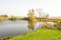 Dutch landscape with lake and grass. Royalty Free Stock Photo