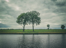 Dutch landscape. Dutch open landscape with 2 trees Stock Photo