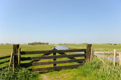 Dutch landscape in polder Royalty Free Stock Photo