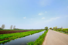 Dutch landscape with road Royalty Free Stock Image