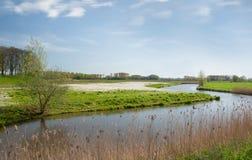 Dutch landscape in springtime Royalty Free Stock Photos