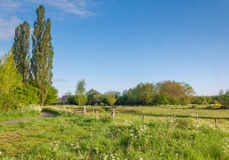 Dutch landscape in springtime Stock Photography