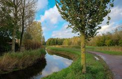 Dutch landscape in the summertime Stock Images