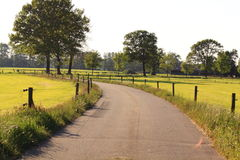 Dutch landscape with tarred road Royalty Free Stock Photos
