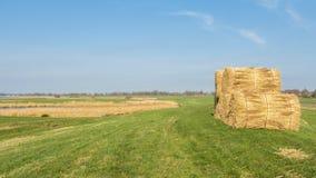 Dutch landscape with thatch sheaf on a farmland Royalty Free Stock Photography