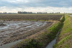 Agricultural fields in the winter season. Dutch landscape with two large fields at the end of the winter season. One of the fields was plowed before the winter Royalty Free Stock Photo