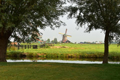 Dutch landscape. Typical Dutch picture. Windmills in Holland Stock Image