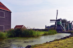 Dutch landscape. Typical Dutch picture. Windmills in Holland Stock Photo