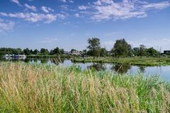 Dutch landscape. Typical Dutch landscape with water, meadow and blue sky's Stock Image
