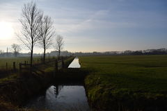 Dutch landscape. With water ditch Stock Photo