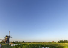 Dutch landscape with windmills and free space for your message Stock Photography