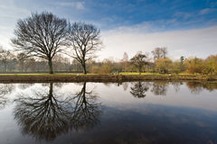 Dutch landscape in winter Royalty Free Stock Images