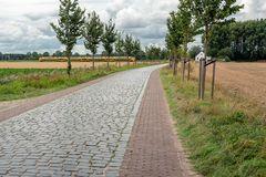 Dutch landscape with a yellow train in the background. LANGEWEG, NETHERLANDS - AUGUST 24, 2018: Curved road paved with cobblestones and trees on both sides. In royalty free stock images