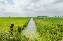 Dutch Landscapes - Baarn - Utrecht. Straight ditch through typical Dutch landscape with a cloudy blue sky Stock Photo
