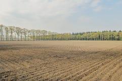 Dutch Landscapes - De Risp - North Brabant Royalty Free Stock Images