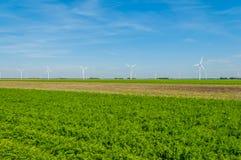 Dutch Landscapes - Flevoland Royalty Free Stock Photo