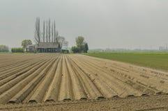Dutch Landscapes - Heinkenszand - Zeeland Royalty Free Stock Photography