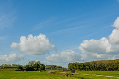 Dutch Landscapes - Maurik - Gelderland Stock Images