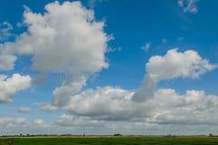 Dutch Landscapes - Maurik - Gelderland Royalty Free Stock Image