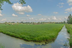 Dutch Landscapes - Oosterwijk - South Holland Royalty Free Stock Photos