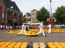 Dutch men at Alkmaar cheese market Nederland. Dutch men carrying cheese and tourists watching at Alkmaar cheese market in Nederland Royalty Free Stock Photos