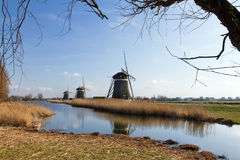 Dutch mills reflection Stock Photography
