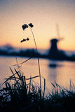 Dutch mills on sunrise. Sunrise of a small grain in front of a dutch mill stock photography