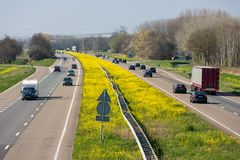 Dutch motorway near Lelystad with blooming rapeseed. Dutch motorway A6 near Lelystad with blooming rapeseed stock images