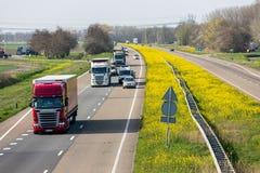 Dutch motorway near Lelystad with blooming rapeseed. Lelystad, The Netherlands - April 5, 2019: Dutch motorway A6 near Lelystad with blooming rapeseed stock photo