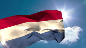 Dutch national flag blowing in the breeze stock footage