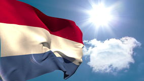 Dutch national flag waving stock video footage