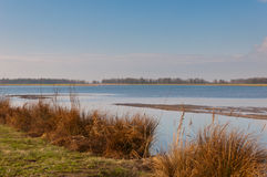 Dutch National Park De Biesbosch Stock Photo
