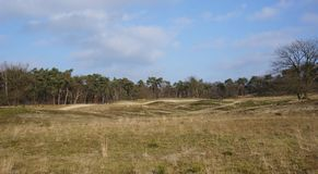 Dutch national park. National park in the Netherlands called the Loonse en Drunense Duinen Royalty Free Stock Photo