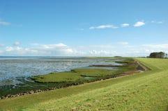 Dutch nature landscape Stock Images