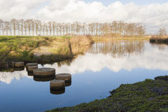Dutch nature Reserve De Schammer Royalty Free Stock Photos