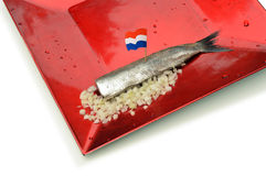 Dutch new herring Royalty Free Stock Image