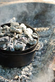 Dutch oven campfire cooking. A dutch oven covered in gray coals cooking on a campfire Royalty Free Stock Image