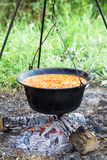 Dutch oven cooking beans Royalty Free Stock Photo
