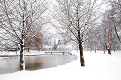 Dutch park in wintertime Royalty Free Stock Photo