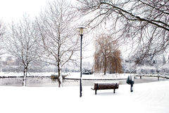 Dutch park in wintertime Stock Photos