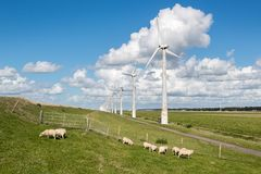 Dutch pasture with sheep and windturbines with a beautiful late summer cloudsky Stock Image