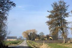 Dutch polder landscape in the Netherlands Stock Images