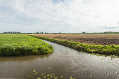 Dutch polder landscape divided by the water Royalty Free Stock Images