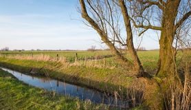 Dutch polder landscape at the end of a winter day Stock Photo