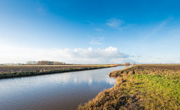 Dutch polder landscape in low afternoon sunlight Royalty Free Stock Photo