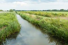 Dutch polder landscape in the summer season Royalty Free Stock Photo