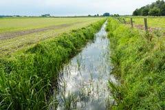 Dutch polder landscape in the summer season Stock Photos