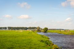 Dutch polder landscape with a wide ditch for drainage purposes. There are many green meadows separated by wooden gates that are typical of the Alblasserwaard royalty free stock photography