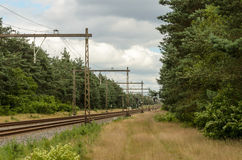 Dutch railroad through forest Stock Images
