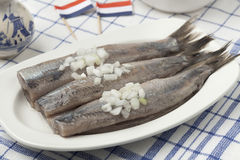 Dutch raw herring. With onions on a dish Stock Image